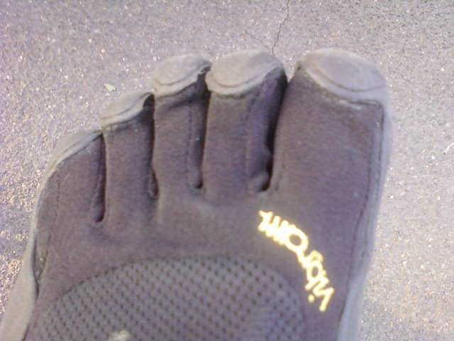 tortue nike chaussure