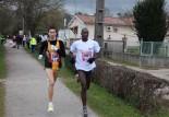 31ème Ronde givrée de Castres : compte-rendu, photos et vidéos