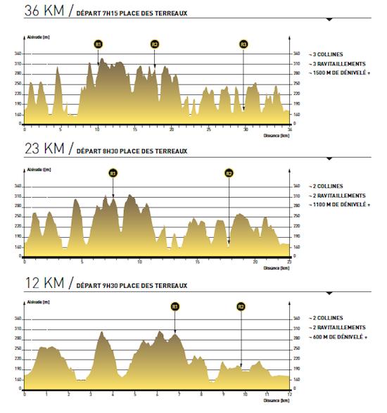 Profils parcours LUT 2013