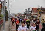 7ème Marathon de Montauban : Résultats, photos et vidéo