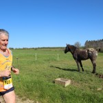 trail-entre-save-et-galop-de-st-paul-sur-rave-1