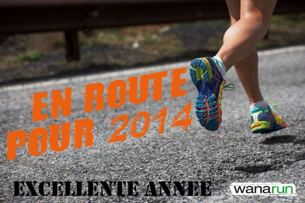 excellente-annee-2014-route