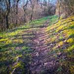 terrain-trail-test-chaussures-2