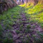 terrain-trail-test-chaussures-4