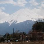 utmf-ultra-trail-mont-fuji-2014