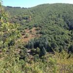 Mont Aigoaul