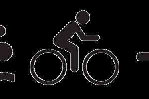 triday-entrainement-triathlon