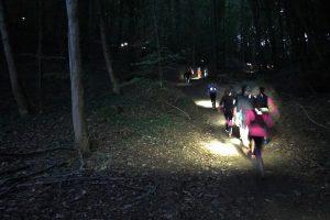 trail-des-lumieres-2016