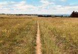 débalisage des tracés de trail : quelles solutions ?